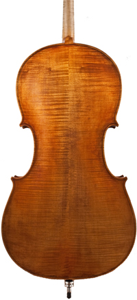 img: back of cello